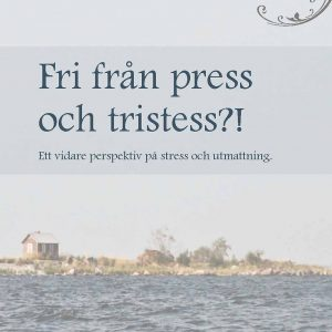 Boris Salo: Fri från press och tristess?!